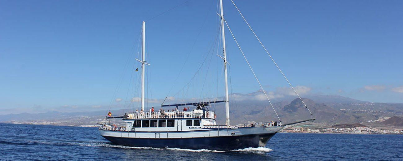 Bahriyeli sailing tenerife top